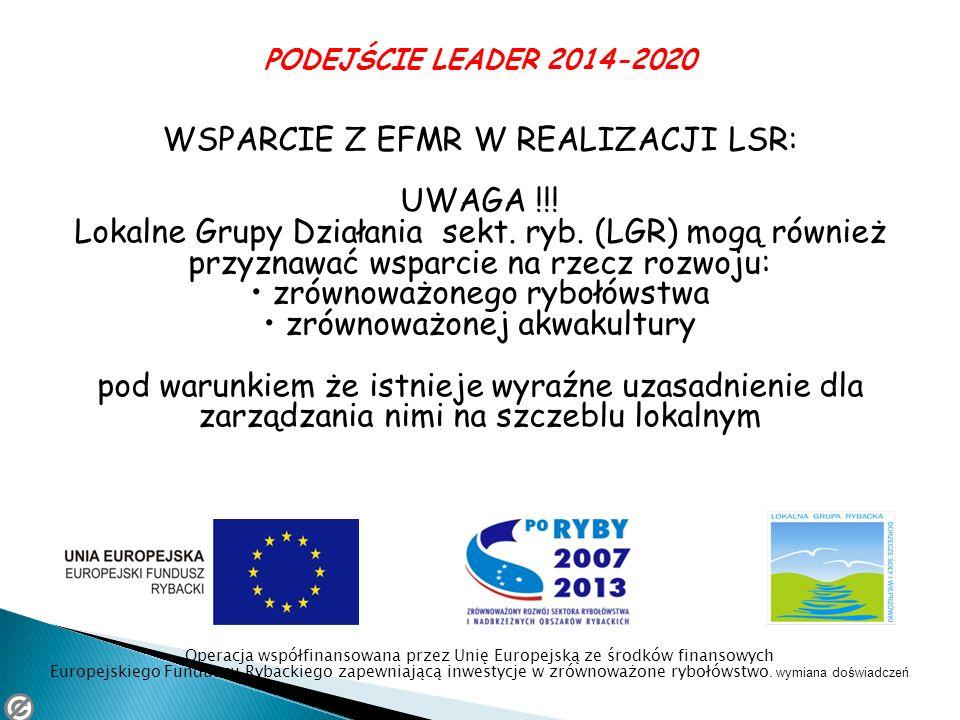 WSPARCIE Z EFMR W REALIZACJI LSR: UWAGA !!!