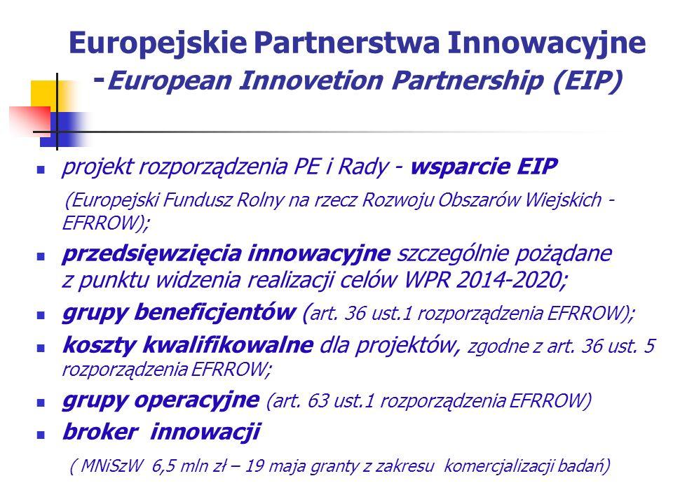 Europejskie Partnerstwa Innowacyjne -European Innovetion Partnership (EIP)
