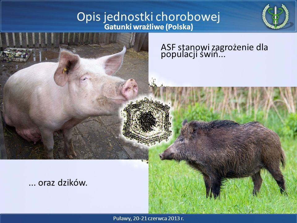 Gatunki wrażliwe (Polska)
