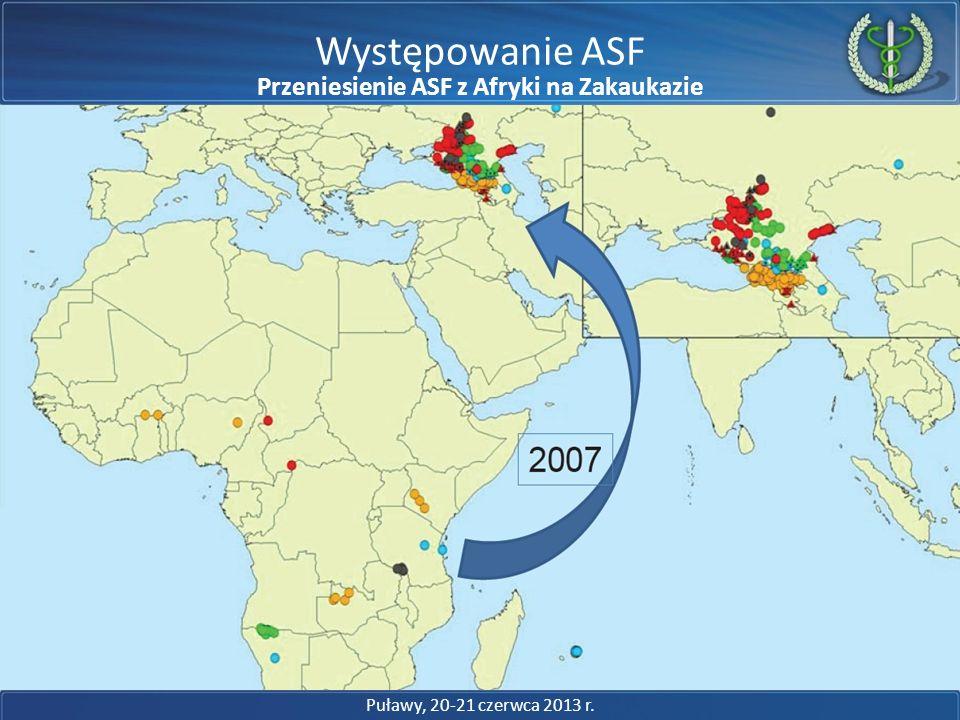 Przeniesienie ASF z Afryki na Zakaukazie Choroby nie znają granic