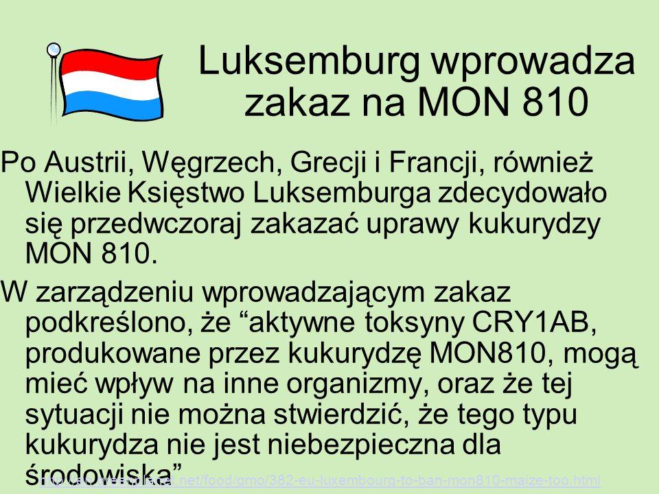 Luksemburg wprowadza zakaz na MON 810