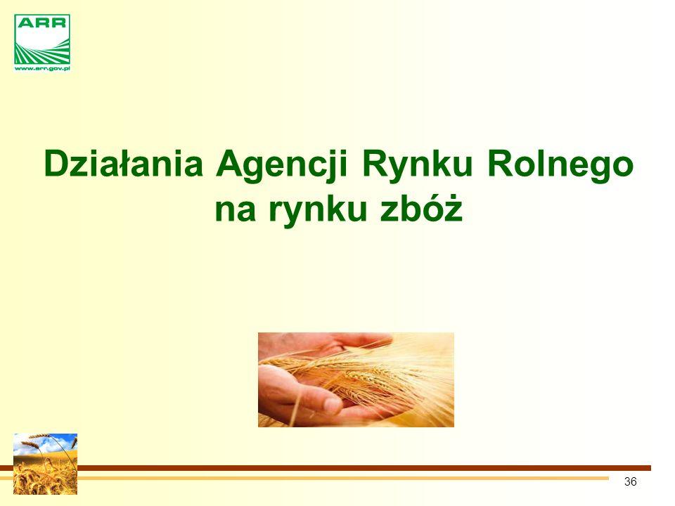 Działania Agencji Rynku Rolnego na rynku zbóż