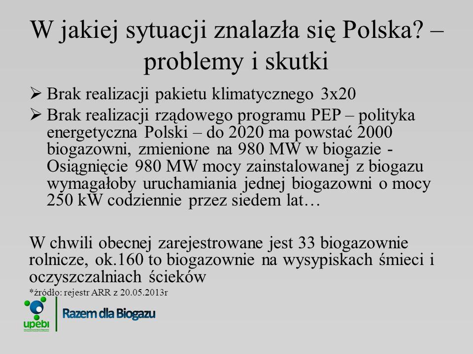 W jakiej sytuacji znalazła się Polska – problemy i skutki