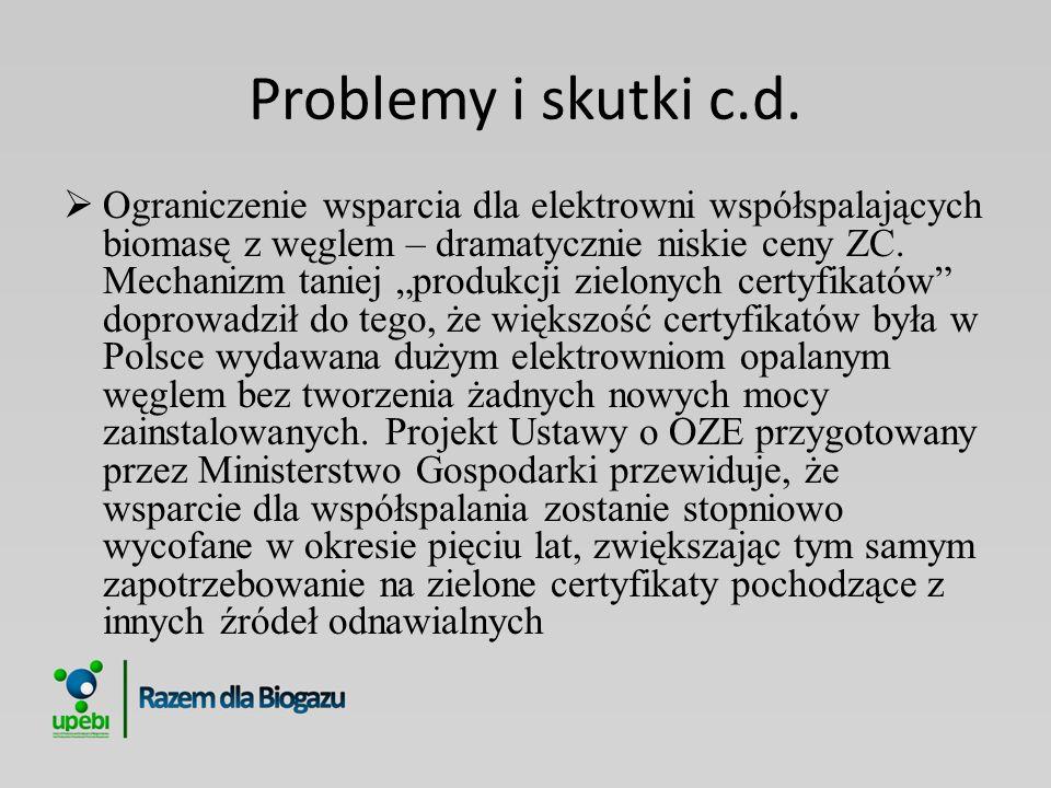 Problemy i skutki c.d.