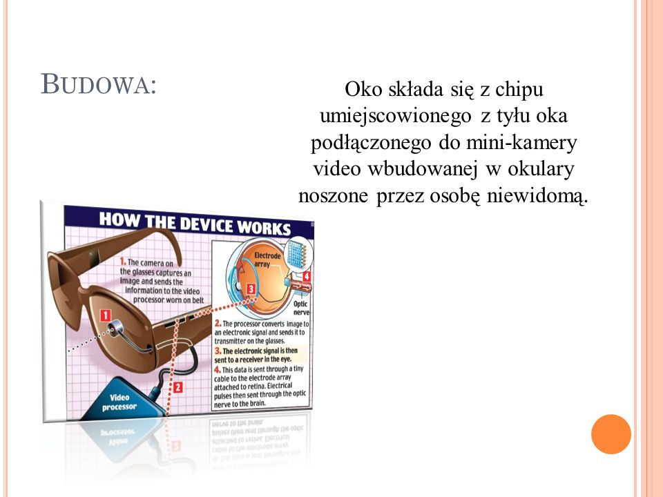 Budowa: Oko składa się z chipu umiejscowionego z tyłu oka podłączonego do mini-kamery video wbudowanej w okulary noszone przez osobę niewidomą.