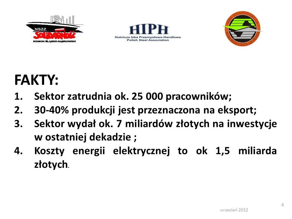 FAKTY: Sektor zatrudnia ok. 25 000 pracowników;