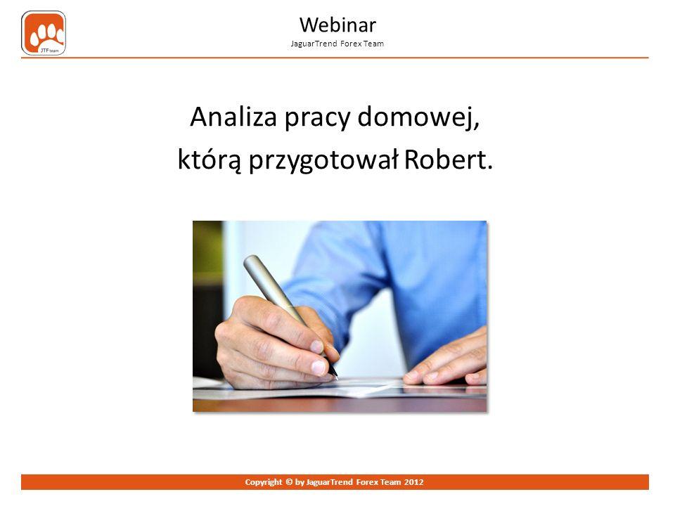 Analiza pracy domowej, którą przygotował Robert.