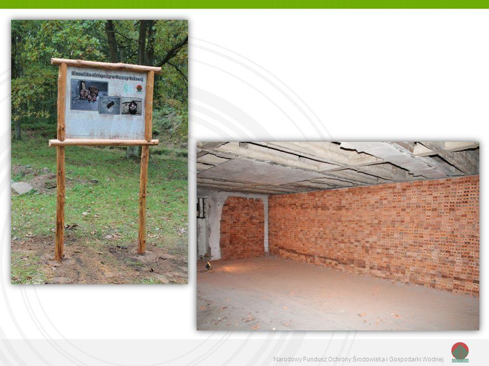 zdjęcie ścianki z cegły dziurawki zainstalowanej w bunkrach Prochowni w Puszczy Bukowej,