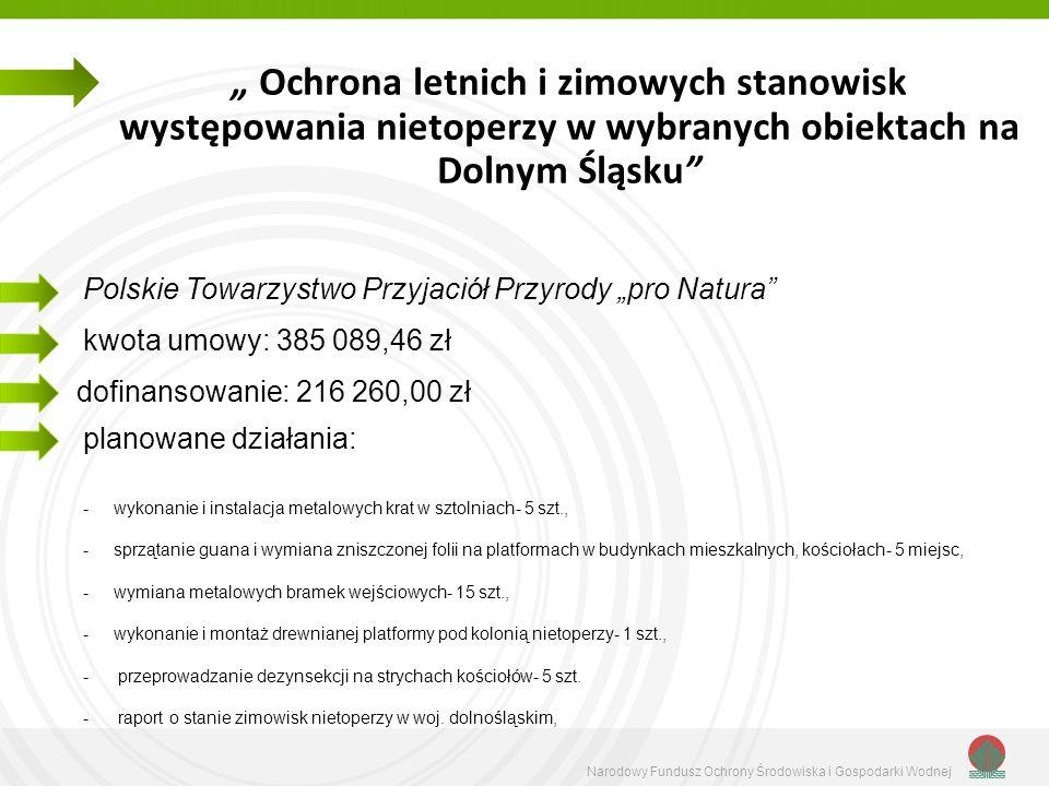 """"""" Ochrona letnich i zimowych stanowisk występowania nietoperzy w wybranych obiektach na Dolnym Śląsku"""