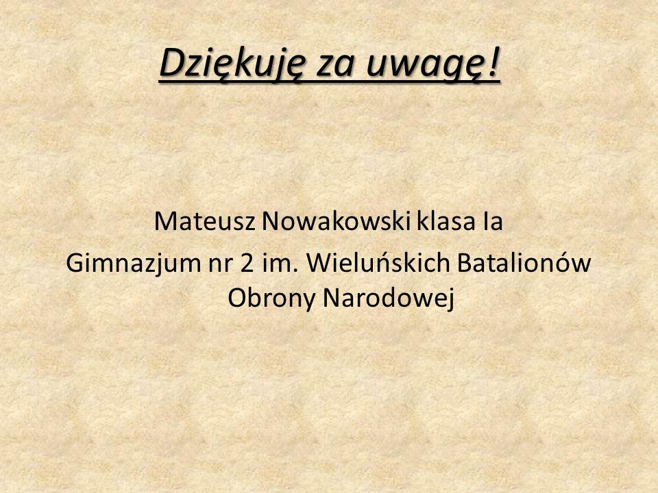 Dziękuję za uwagę. Mateusz Nowakowski klasa Ia Gimnazjum nr 2 im.