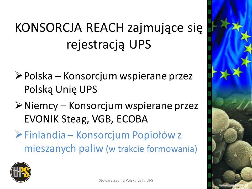 KONSORCJA REACH zajmujące się rejestracją UPS
