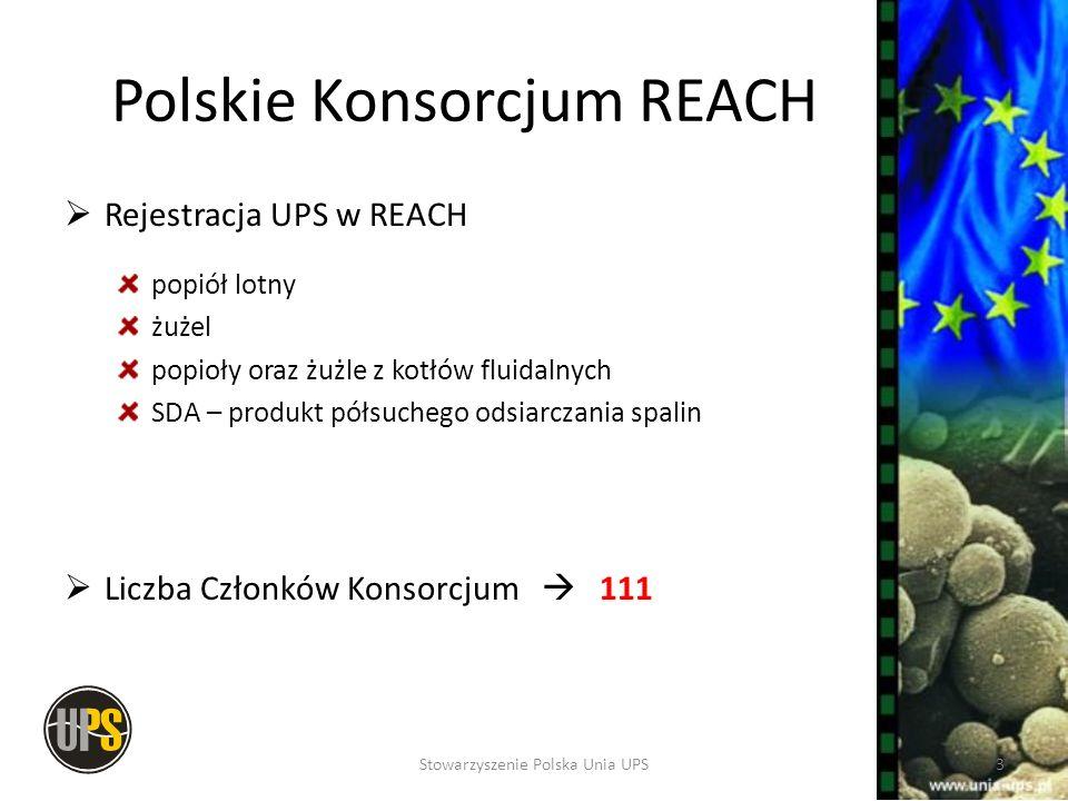 Polskie Konsorcjum REACH