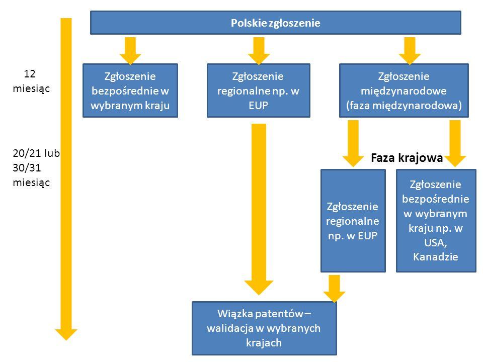 Faza krajowa Polskie zgłoszenie Polskie zgłoszenie 12 miesiąc