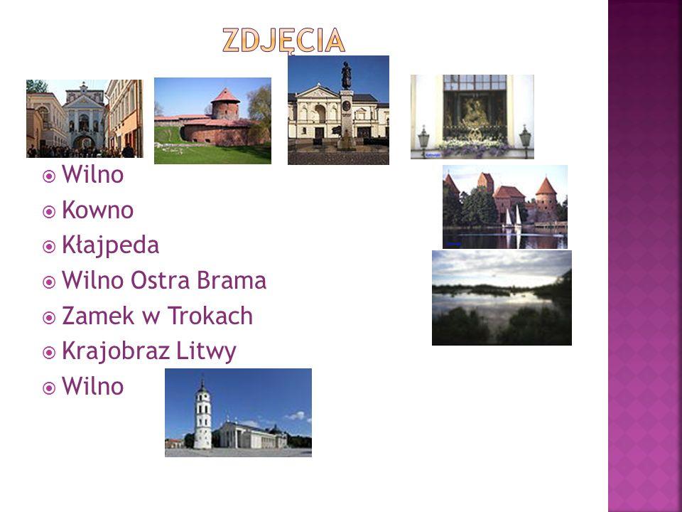 Zdjęcia Wilno Kowno Kłajpeda Wilno Ostra Brama Zamek w Trokach