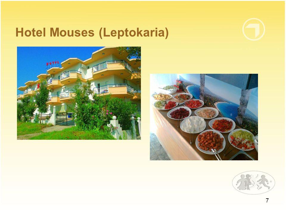 Hotel Mouses (Leptokaria)
