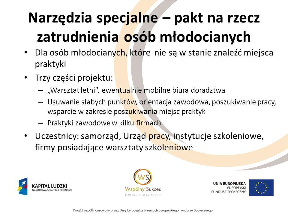 Narzędzia specjalne – pakt na rzecz zatrudnienia osób młodocianych