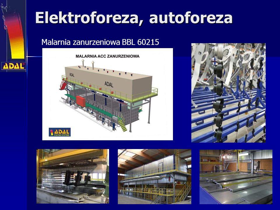 Elektroforeza, autoforeza
