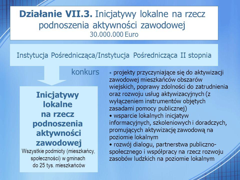 Działanie VII.3. Inicjatywy lokalne na rzecz