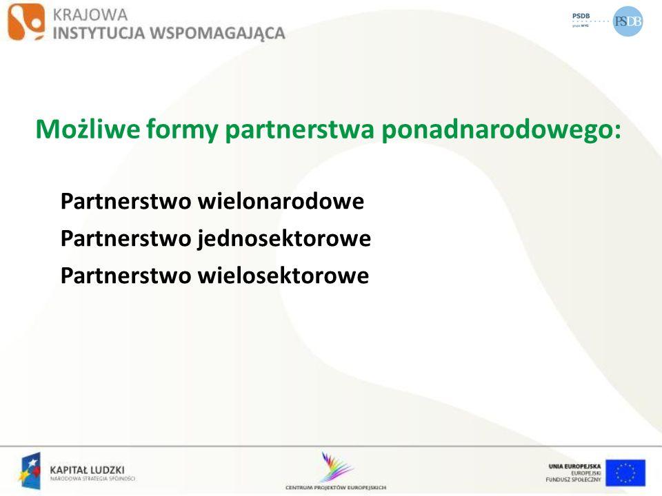 Możliwe formy partnerstwa ponadnarodowego: