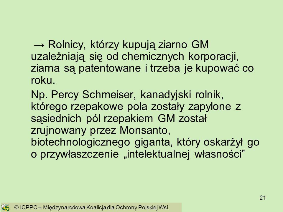 → Rolnicy, którzy kupują ziarno GM uzależniają się od chemicznych korporacji, ziarna są patentowane i trzeba je kupować co roku.