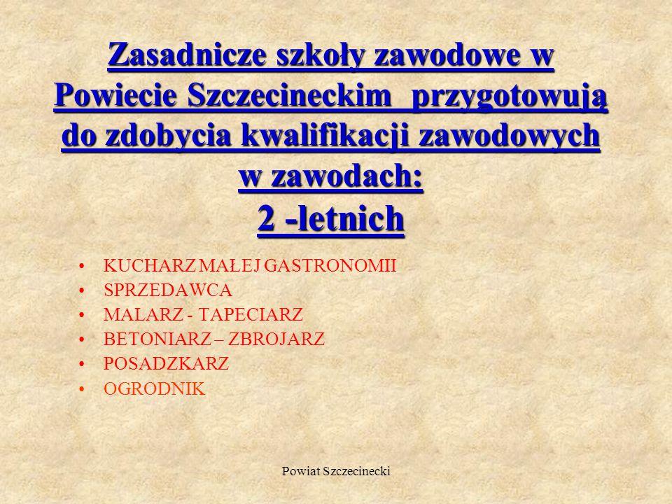 Zasadnicze szkoły zawodowe w Powiecie Szczecineckim przygotowują do zdobycia kwalifikacji zawodowych w zawodach: 2 -letnich
