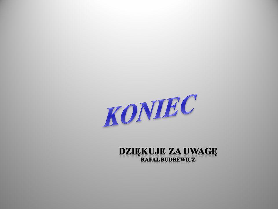 KONIEC Dziękuje za uwagę Rafał budrewicz