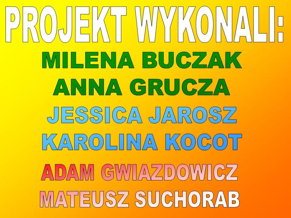 PROJEKT WYKONALI: MILENA BUCZAK. ANNA GRUCZA. JESSICA JAROSZ. KAROLINA KOCOT. ADAM GWIAZDOWICZ.
