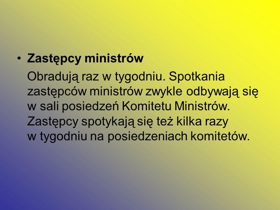 Zastępcy ministrów