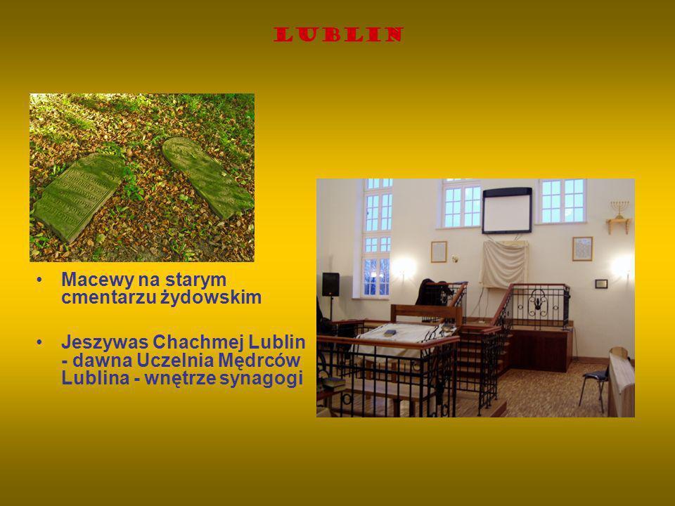 Lublin Macewy na starym cmentarzu żydowskim.