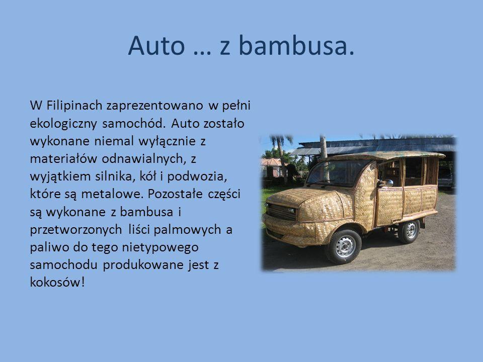 Auto … z bambusa.