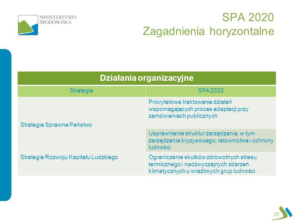 SPA 2020 Zagadnienia horyzontalne