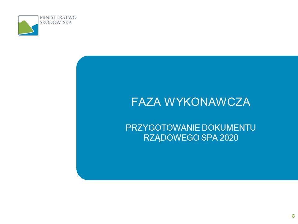Faza wykonawcza przygotowanie dokumentu rządowego SPA 2020