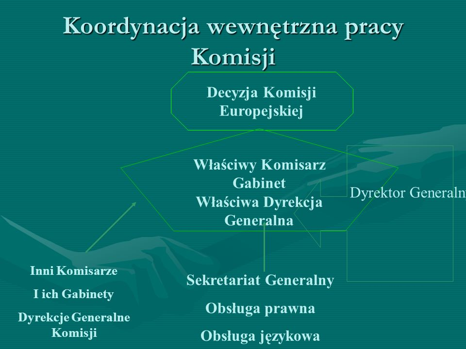 Koordynacja wewnętrzna pracy Komisji