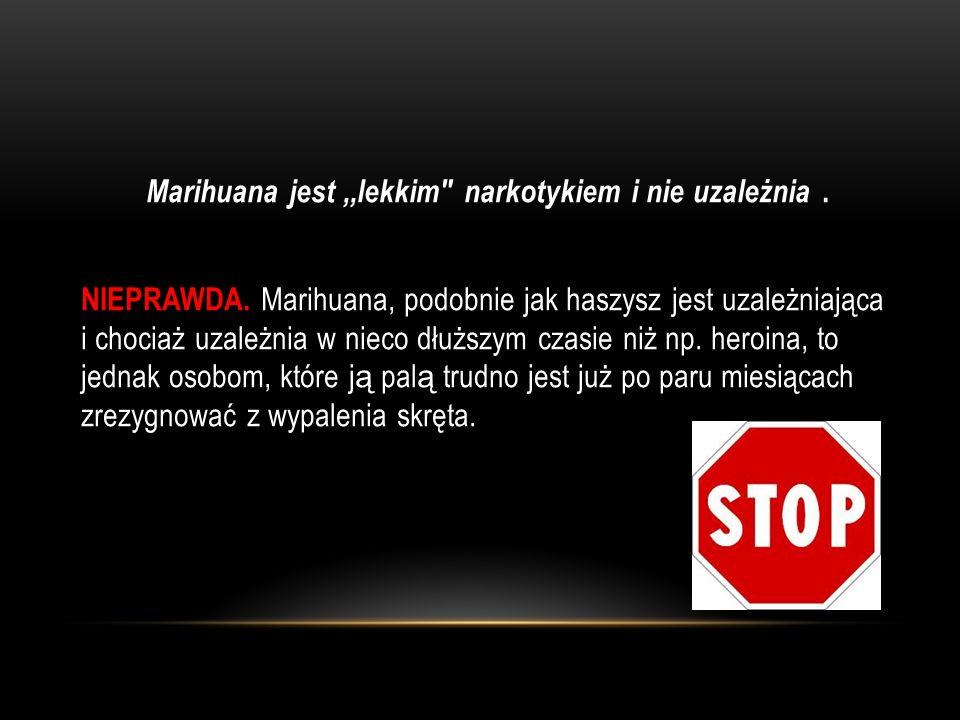 Marihuana jest ,,lekkim narkotykiem i nie uzależnia. NIEPRAWDA