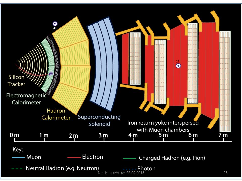 Electron: Bending in the magnetic field, leaving hits in the tracker layers and being stopped by the electromagnetic calorimeter