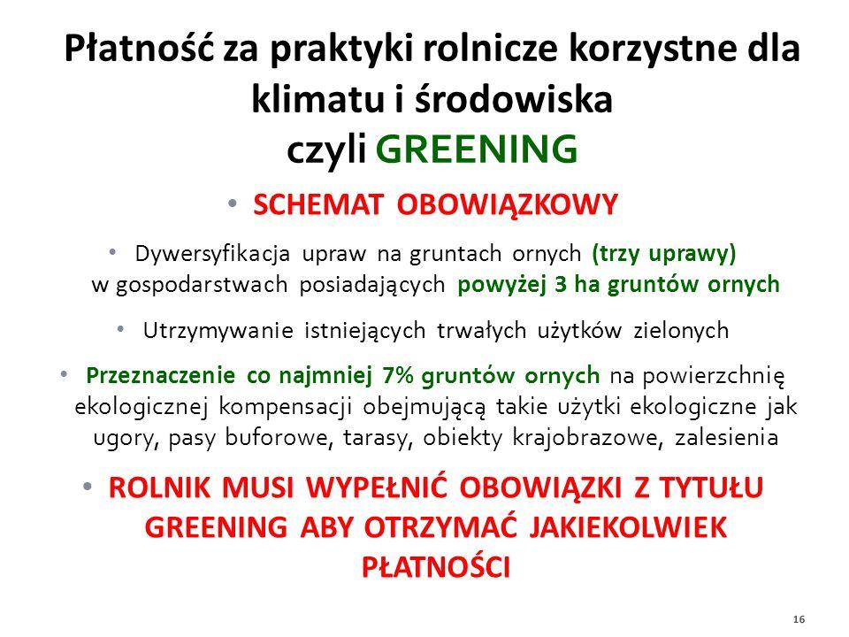 Utrzymywanie istniejących trwałych użytków zielonych