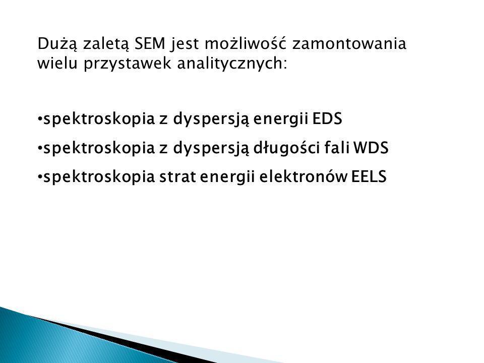 Dużą zaletą SEM jest możliwość zamontowania wielu przystawek analitycznych: