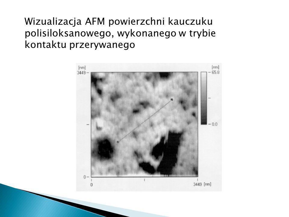 Wizualizacja AFM powierzchni kauczuku polisiloksanowego, wykonanego w trybie kontaktu przerywanego
