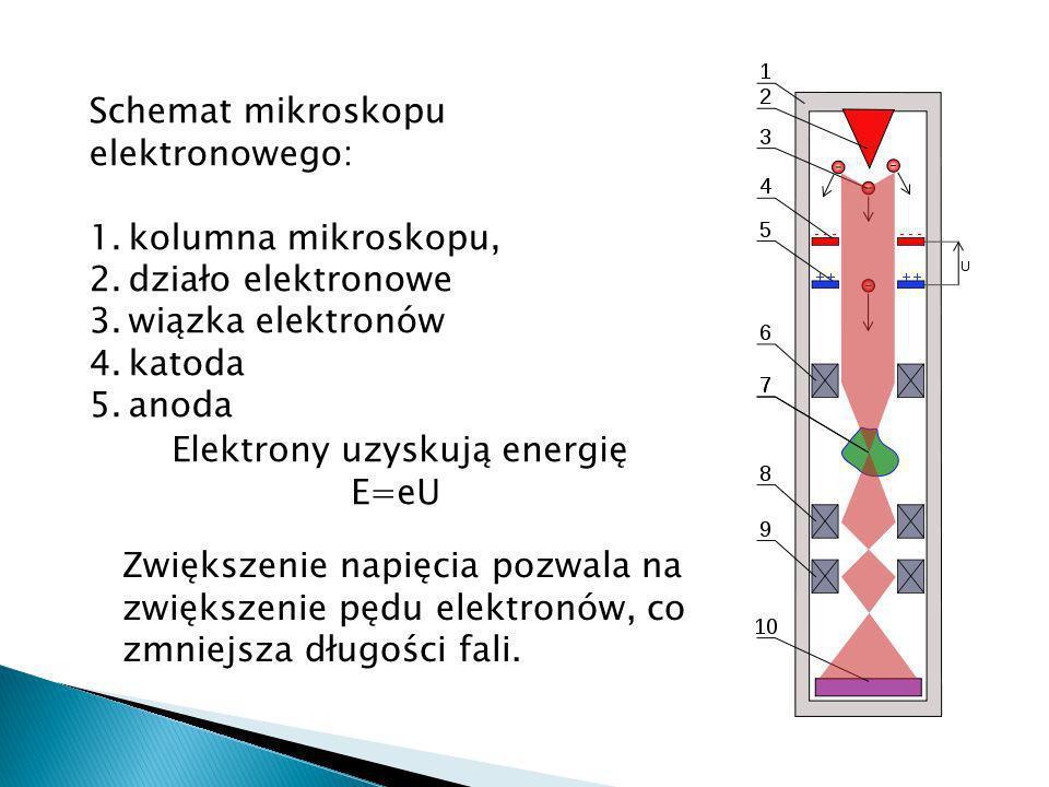 Schemat mikroskopu elektronowego:
