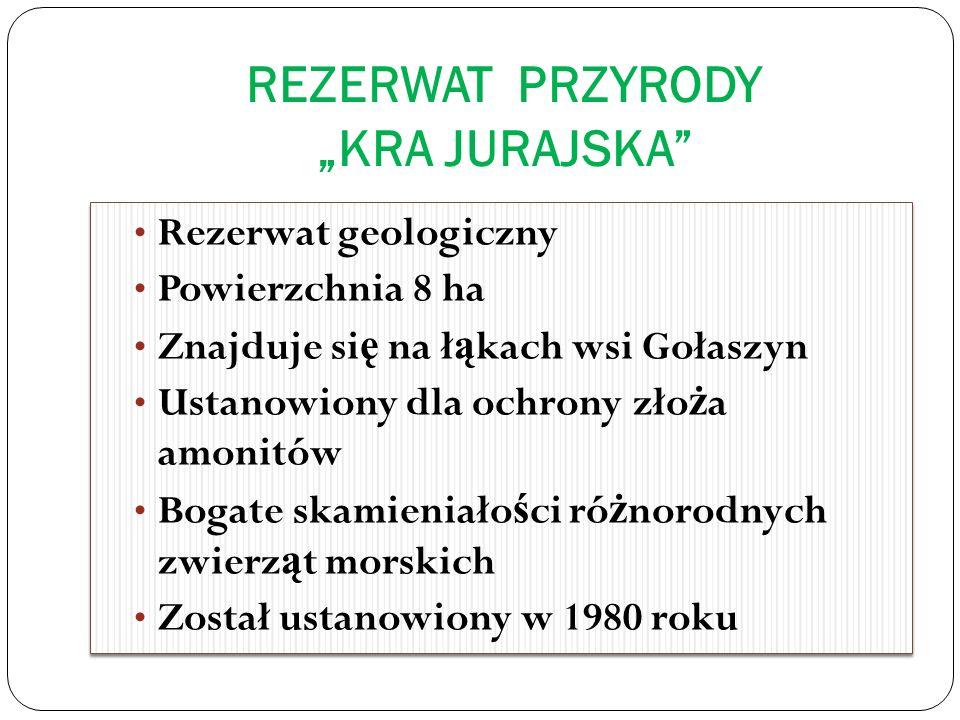 """REZERWAT PRZYRODY """"KRA JURAJSKA"""
