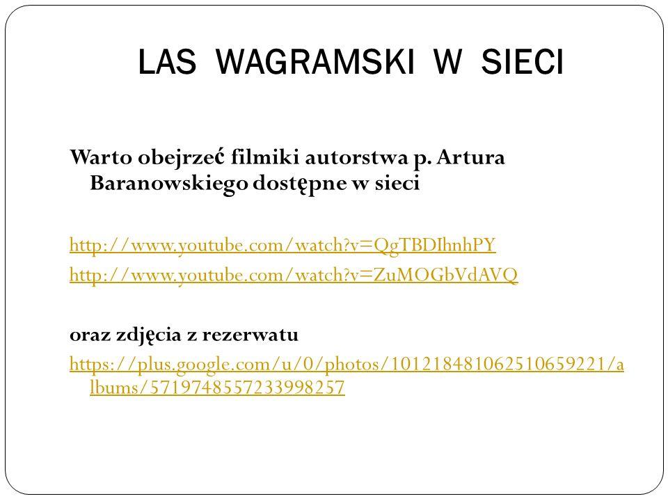 LAS WAGRAMSKI W SIECI Warto obejrzeć filmiki autorstwa p. Artura Baranowskiego dostępne w sieci.