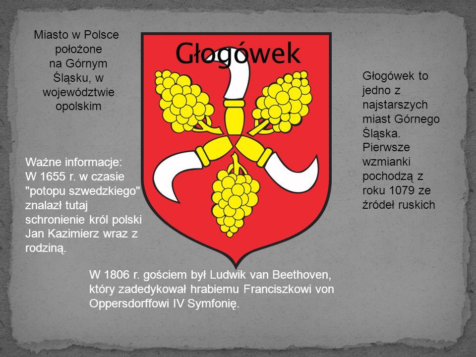 Miasto w Polsce położone na Górnym Śląsku, w województwie opolskim