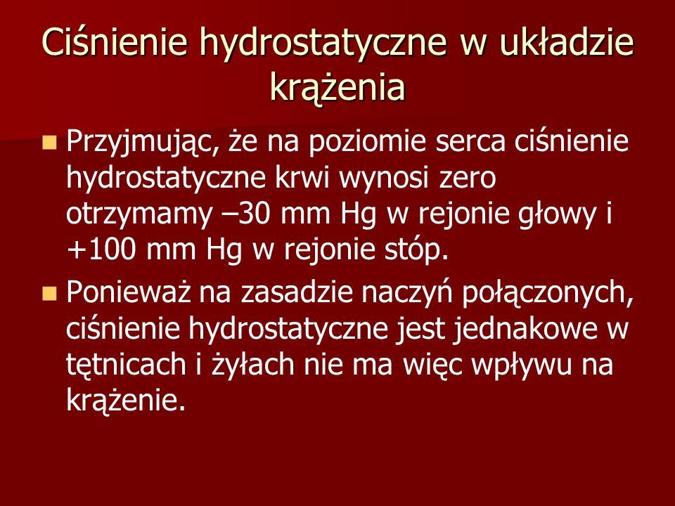 Ciśnienie hydrostatyczne w układzie krążenia