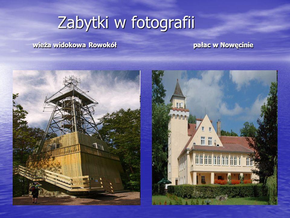 Zabytki w fotografii wieża widokowa Rowokół pałac w Nowęcinie