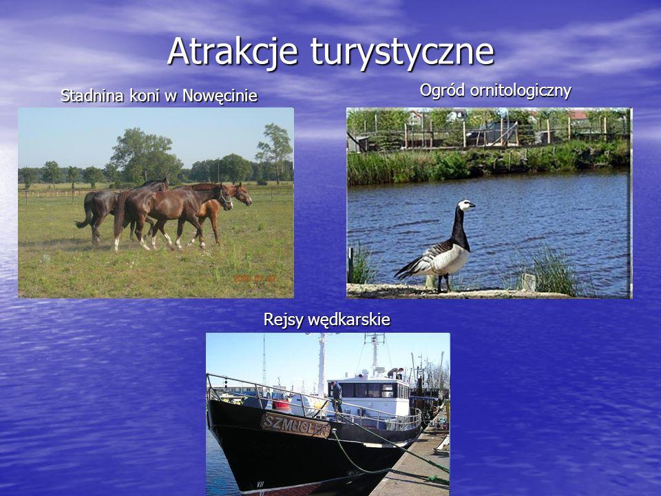 Atrakcje turystyczne Ogród ornitologiczny Stadnina koni w Nowęcinie