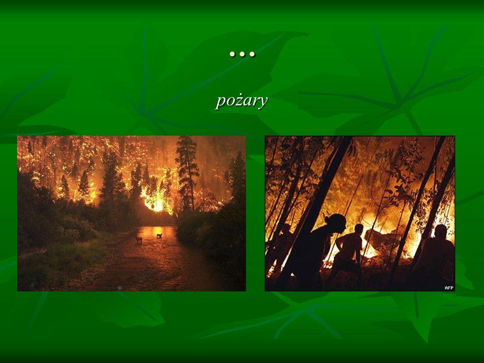 … pożary