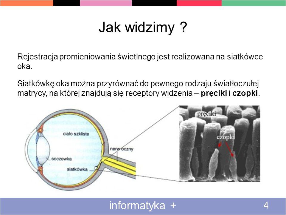 Jak widzimy informatyka +