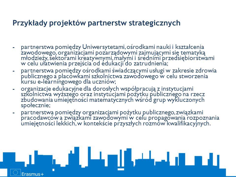 Przykłady projektów partnerstw strategicznych