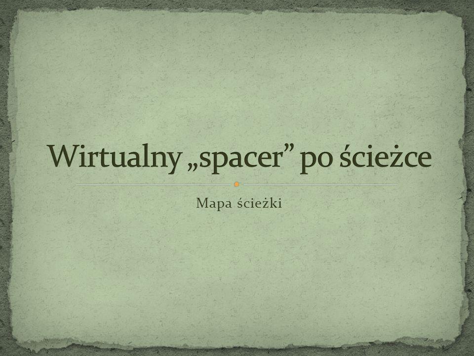 """Wirtualny """"spacer po ścieżce"""