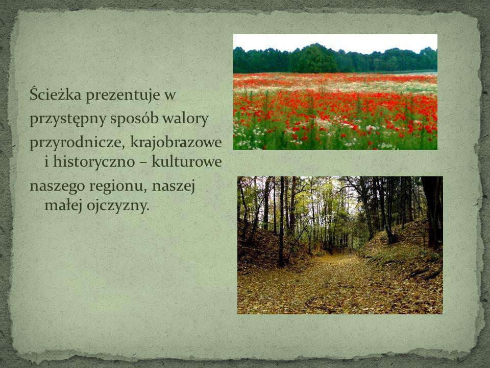 Ścieżka prezentuje wprzystępny sposób walory. przyrodnicze, krajobrazowe i historyczno – kulturowe.